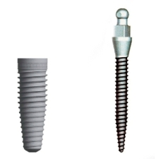 Image of a traditional implant and the more affodable mini implant